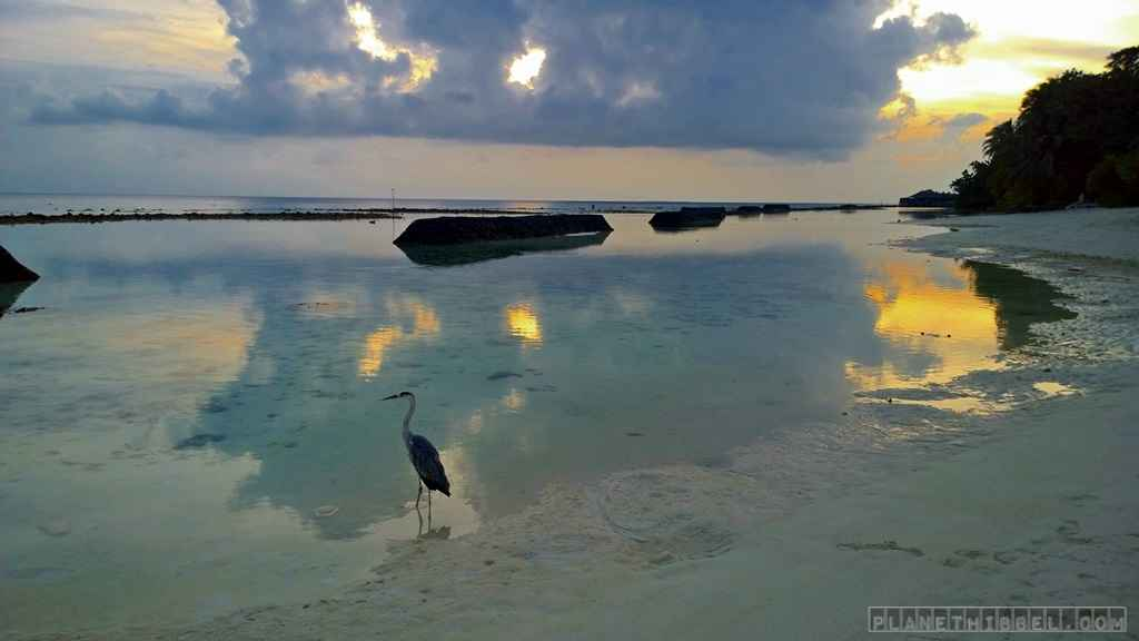 Malediven1