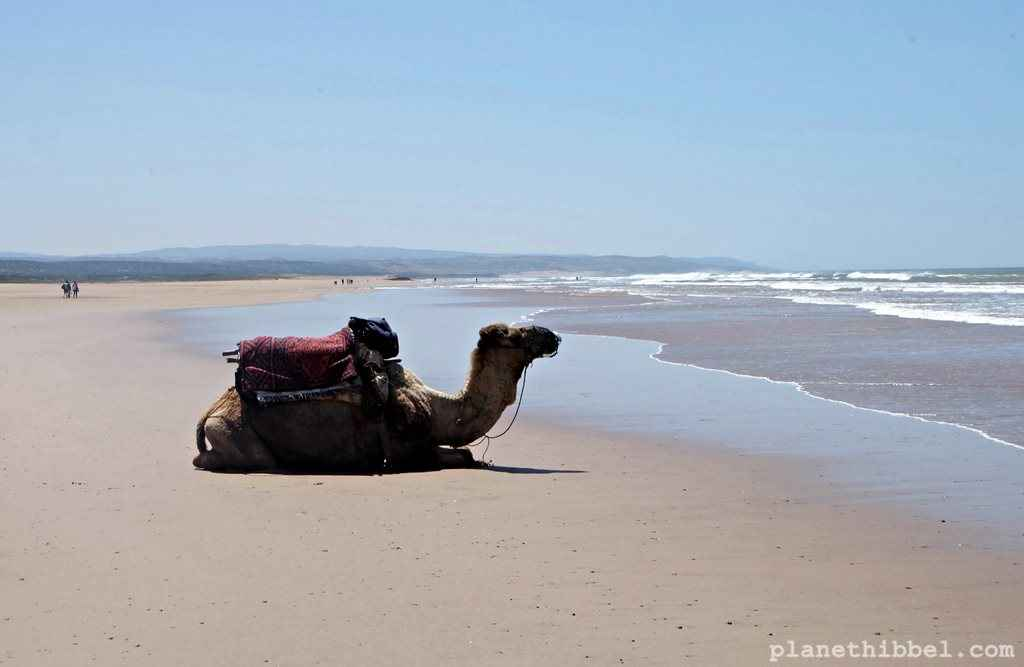 Essaouira3