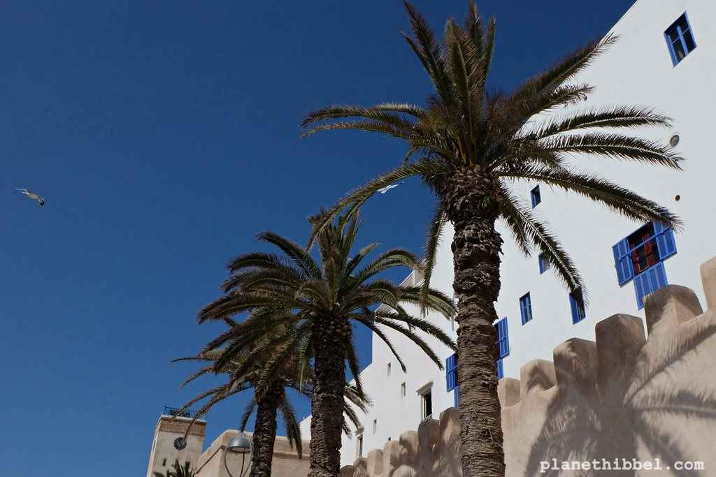 Essaouira15