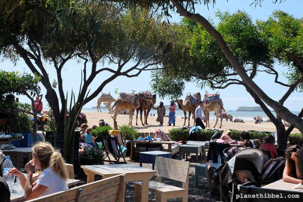 Essaouira18