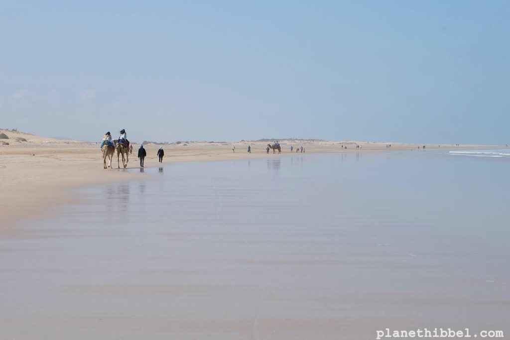 Essaouira43