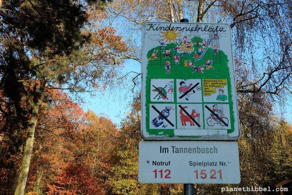 Tannenbusch11