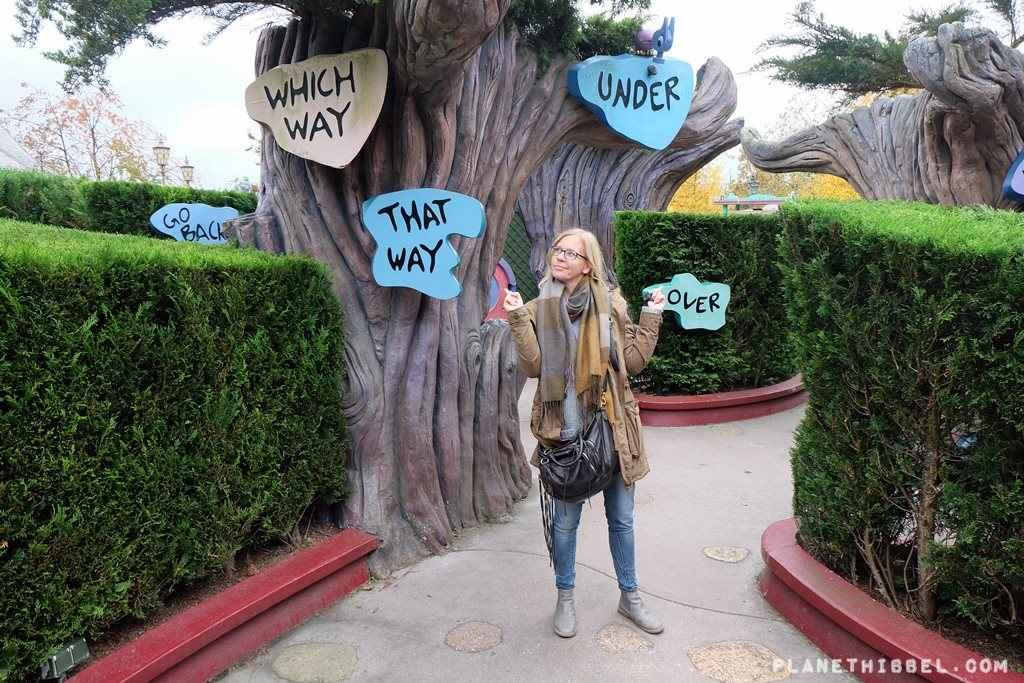 DisneylandParis14