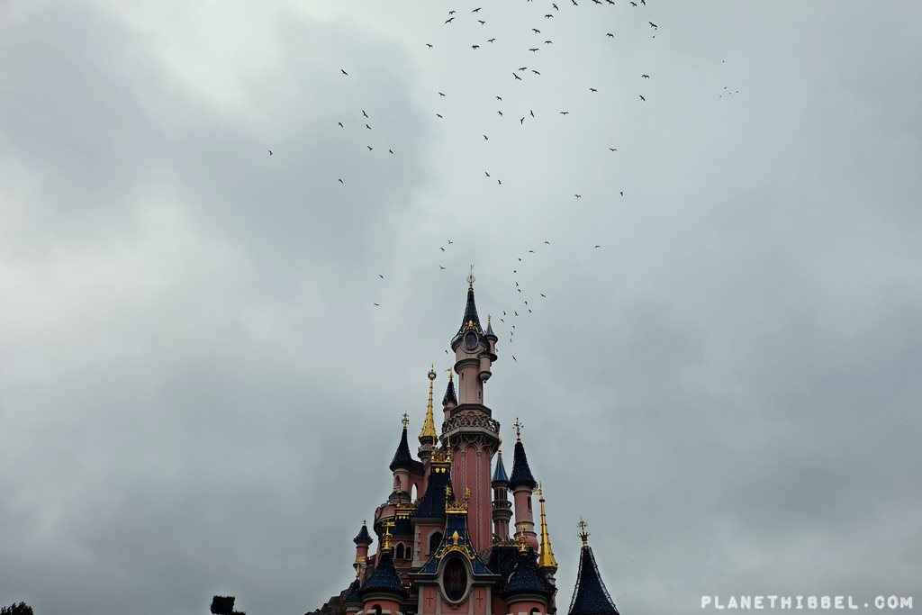 DisneylandParis16