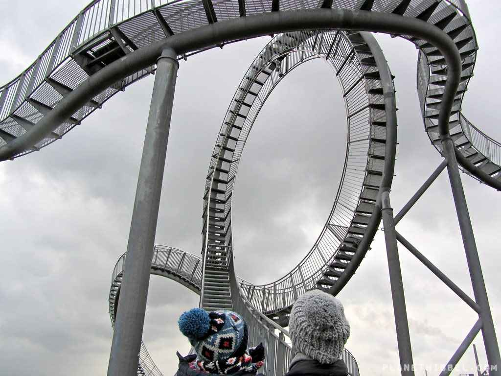 Tiger&Turtle7