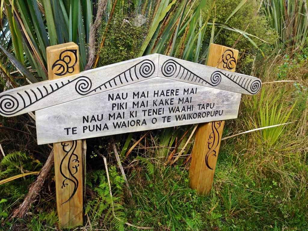 NZ Waikourupupu Springs_Uli