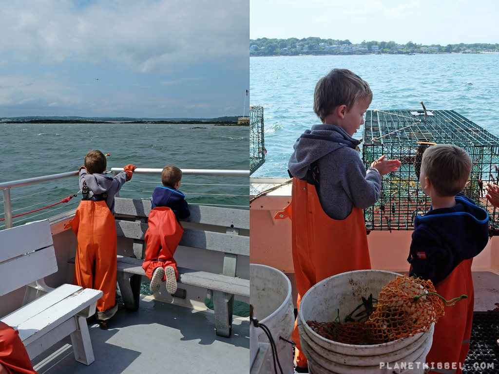 Lobsterfishing10